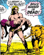 Bruce Banner (Earth-616) is dead (again)