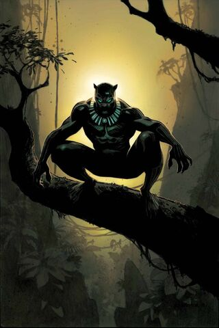 File:Black Panther Vol 6 14 Robinson Variant Textless.jpg