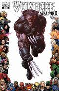 Wolverine Weapon X Vol 1 4 Variant Frame