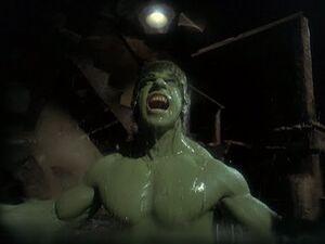 David Banner (Earth-400005) from The Incredible Hulk (TV series) Season 2 14 001