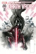 Darth Vader Vol 1 1 Ross Variant