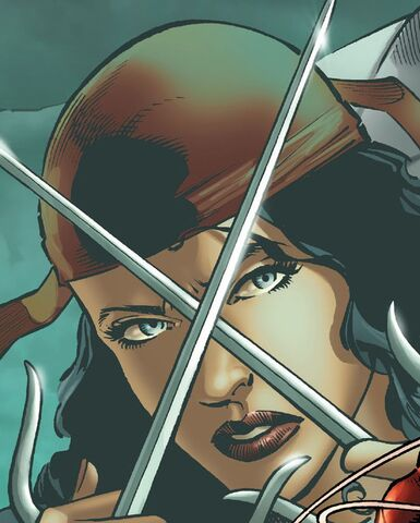 File:Elektra Natchios (Earth-TRN563) from Daredevil Season One Vol 1 1 001.jpg