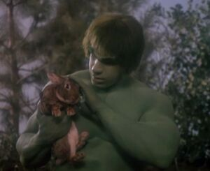 David Banner (Earth-400005) from The Incredible Hulk (TV series) Season 2 12 001