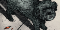 Zeke (Dog) (Earth-616)/Gallery