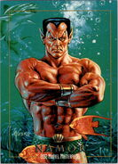 Namor McKenzie (Earth-616) from Marvel Masterpieces Trading Cards 1992 0001