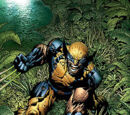 Wolverine, New Avengers (Hero Datafile)