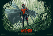 Ant-man-sdcc2-81be5