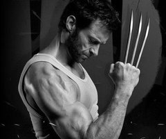 File:Thewolverineb&w.jpg