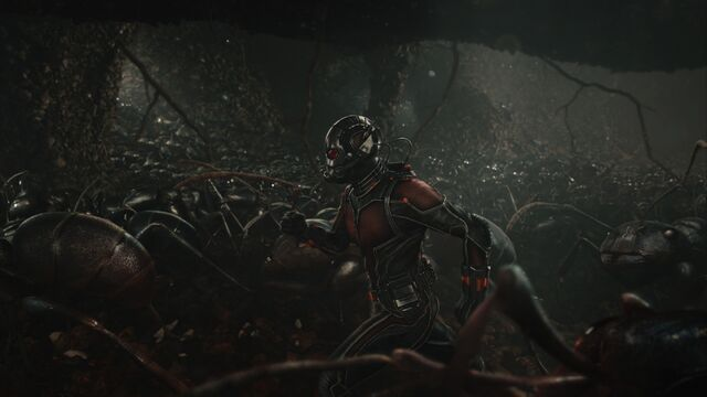 File:Ant-Man and ants.jpg