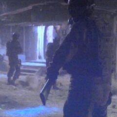 S.H.I.E.L.D. Soldiers.