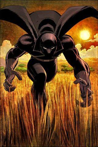 File:Black Panther Vol 4 1 Textless-1-.jpg