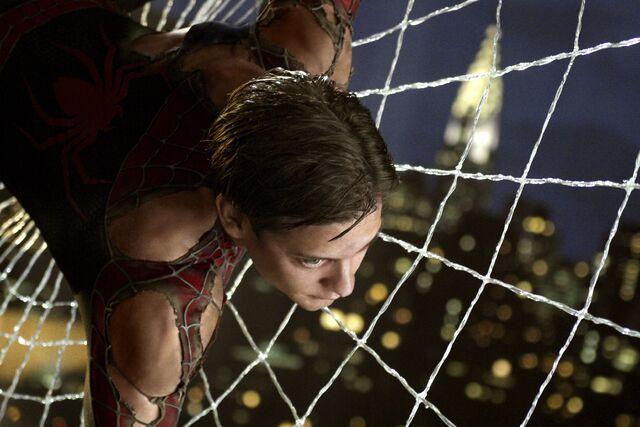 File:Spider-Parker-web.jpg
