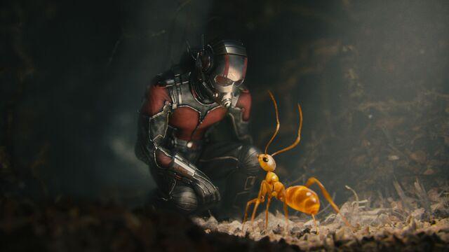File:Ant-Man Still 12.jpg