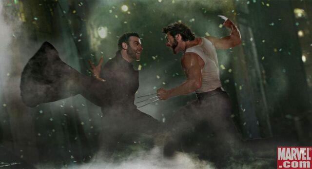 File:Wolverine vs Sabretooth.jpg