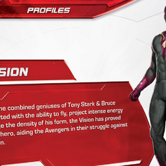 The Vision's short biography.