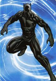 01 BlackPantherUniverse2009