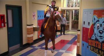 HorseAtSchool
