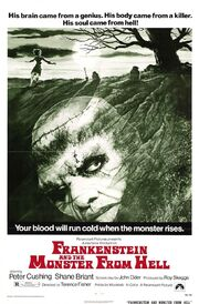 Frankenstein and the monster from hell xlg