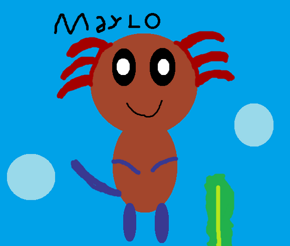 File:Maylo Picture.png