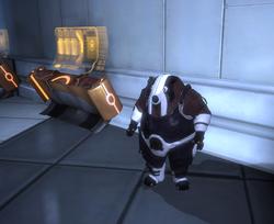 Doran bei den Quasar-Automaten