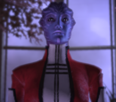 Matriarch Asadera