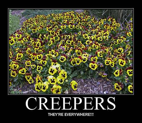 File:Halolz-dot-com-minecraft-creeper-flowers-motivational.jpg