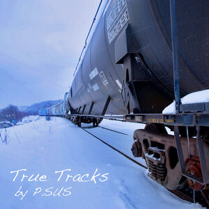 True Tracks - P.SUS