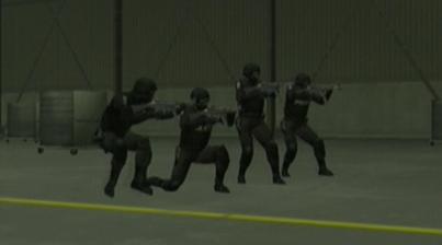 File:SWAT team.png