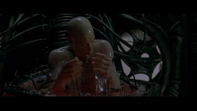 File:The Matrix 233.jpg