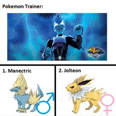 Captain Lightning's Pokemon
