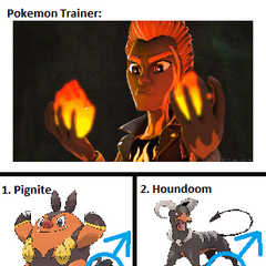 Flint Phoenix's Pokemon