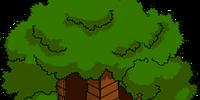 Bart's Treehouse