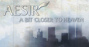 Aesir Corporation image