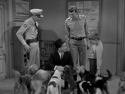 Inspector with dogs