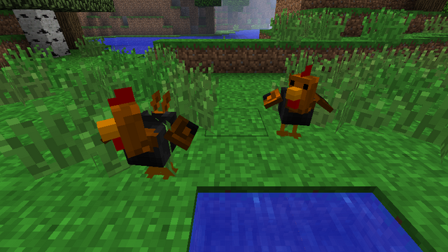 File:Roosters.png