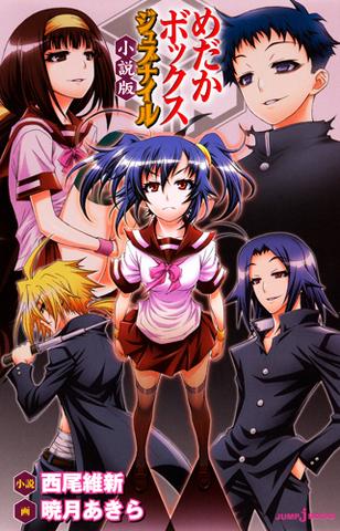 File:Light Novel 5.png