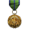 Top Performance Medal