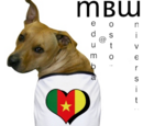 Medumba Wiki