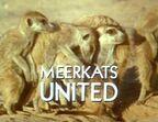 Meerkats United - Title
