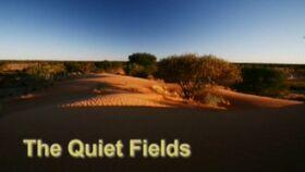 The Quiet Fields