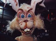 BunnyPoxHarry