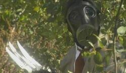 Lobo fuerte mask small