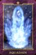 Aquadyne card IS