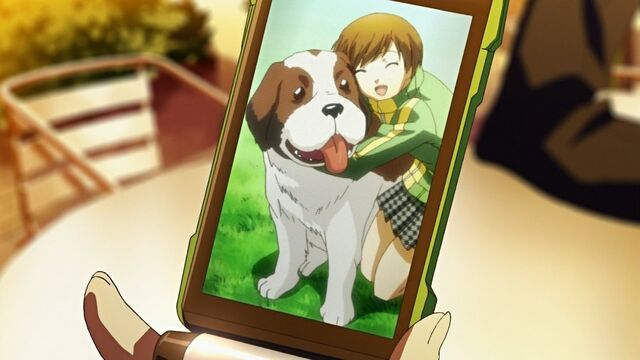 File:Chie has a picture of her pet..jpg