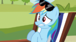 Rainbow Dash freaking out S3E3