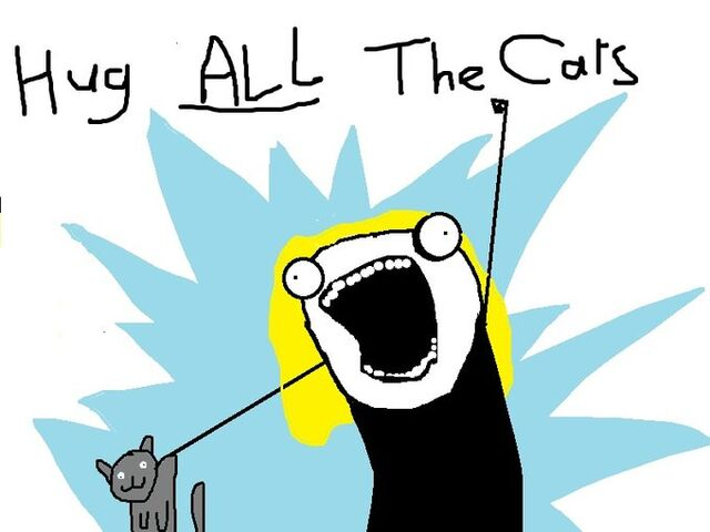 File:ALL the cats.jpg