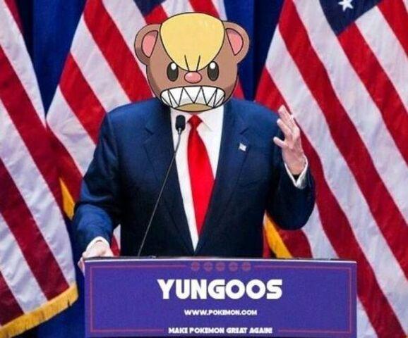 File:Yungoos trump.jpg