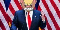 Trump memes