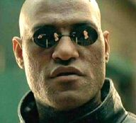 Y what if i told you