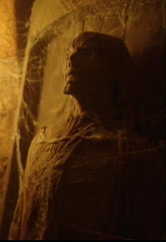 File:330px-P'Jem mummy 1.png